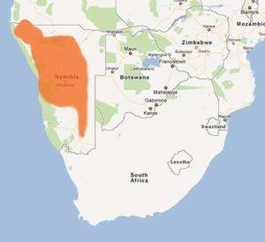 Natrual geographic range of the Kunene Coral Cobra, Aspidelaps lubricus cowlesi